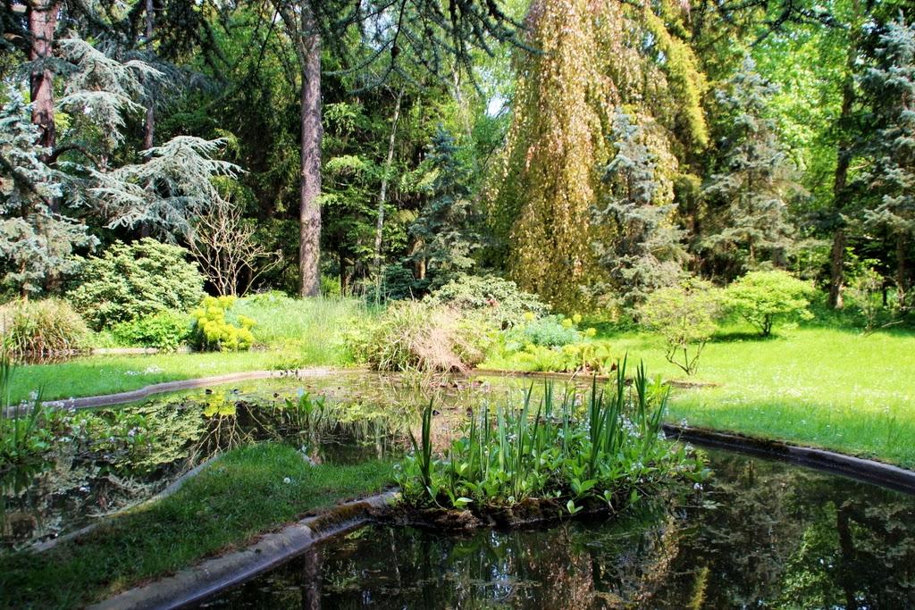 Le jardin albert kahn ma ville lumiere for Jardin anglais albert kahn